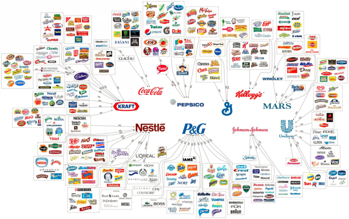web of corps